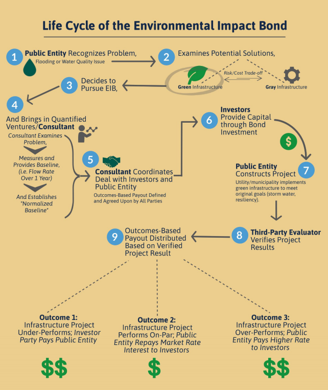 Ifographic depicting the life cycle of the environmental impact bond